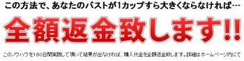 miura2.jpg